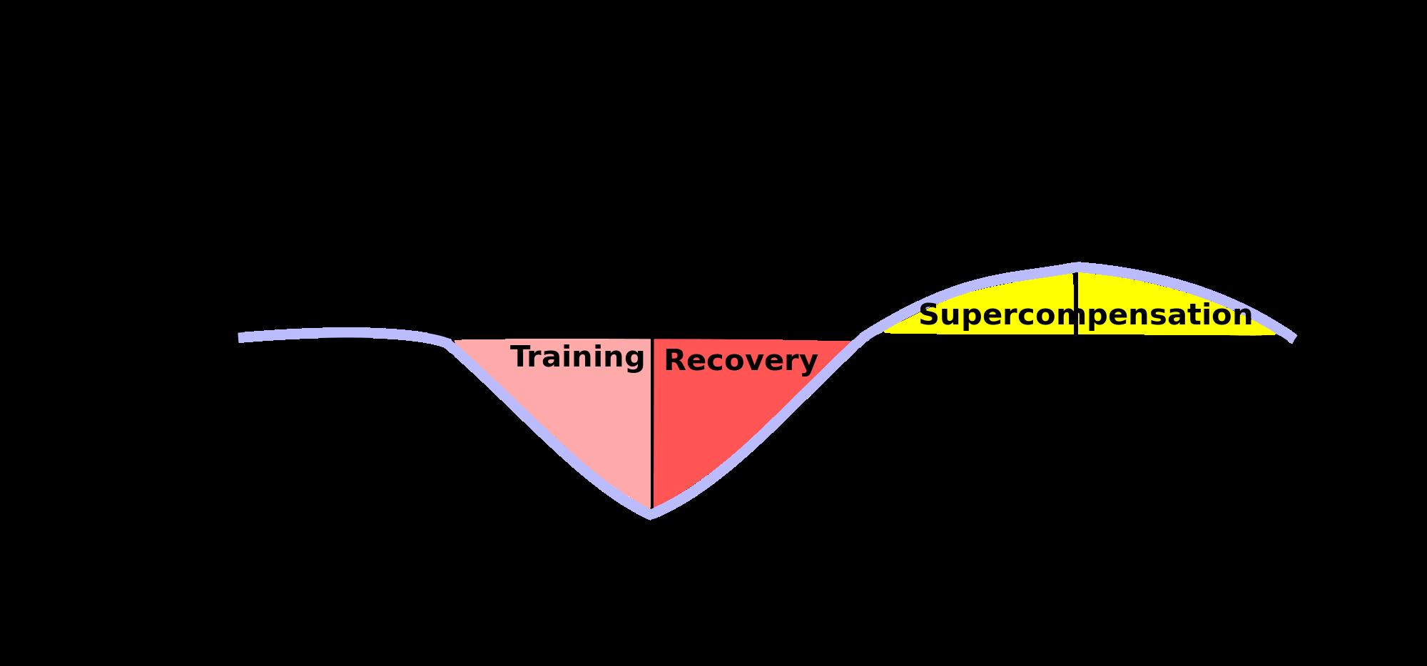 cuánto entrenar